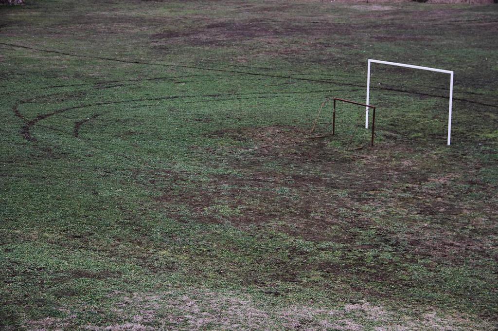 Szabó Attila: Field, 2013