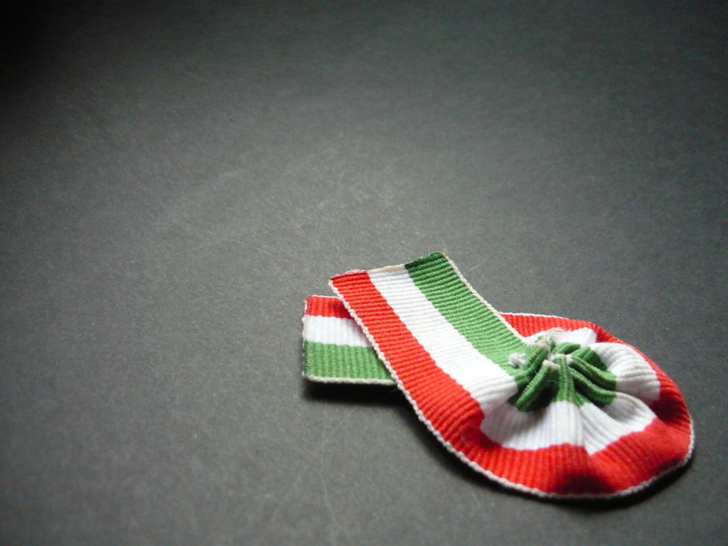 Hungarian_cockade_by_Pozofall