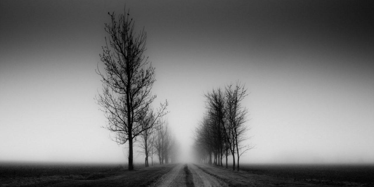 Mi fán terem a halál?