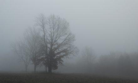 Kopriva Nikolett: Köd, Gőzölés