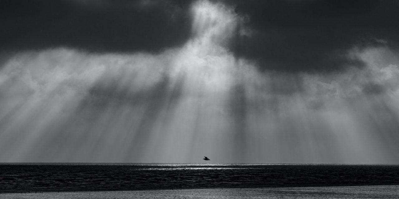 Jung István: Vakhit, reménytelen(ül)